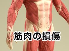筋肉の損傷