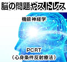 脳の問題やストレス機能神経学PCRT(心身条件反射療法)